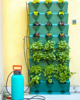 Minigarden Vertical Kitchen Groen tuin