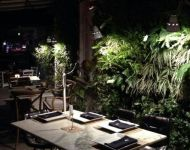 minigarden-greenwall-13
