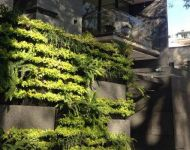 minigarden-greenwall-9